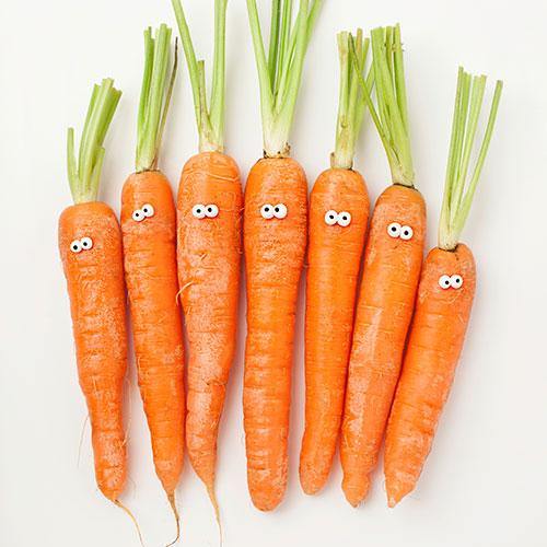 Afbeeldingsresultaat voor wortels